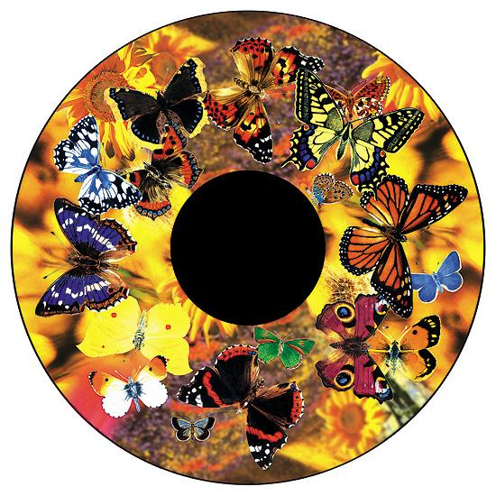 Solar Effect Wheel Butterflies - 34279-bos - Special Populations Children Special Needs Gaint Leap Visual Snoezelen Projectors And Accessories Packages 34279-BOS