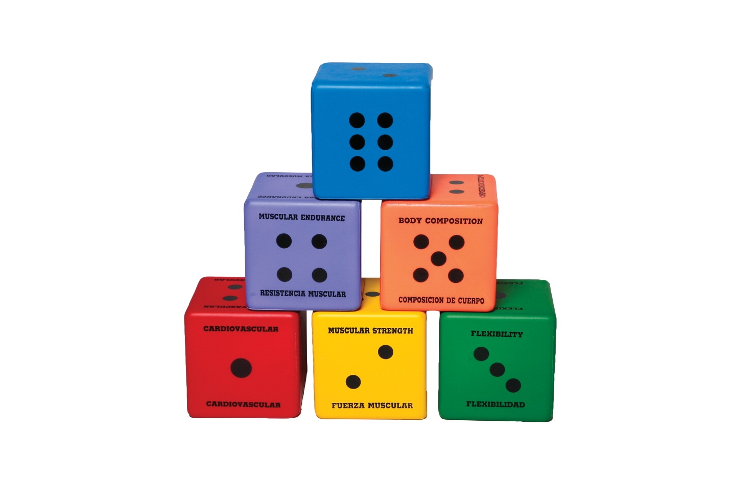 Toys Natural & Physical World - 1449433 - Sportime Five Components Of Fitness Dice; Set Of 6 1449433
