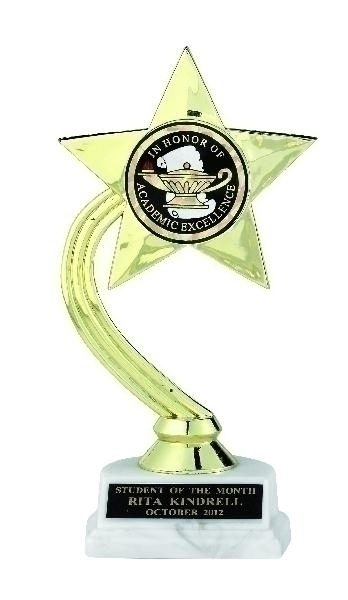 Gold Star Trophy; 8 Inch; White Marble Base; 2 Inch Insert - Tr7272 - New Academic Awards And Trophies TR7272