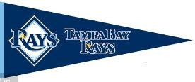 Tampa Bay Rays Traditions - 60260 - Baseball Mlb Baseball Tampa Bay Rays Bath 60260